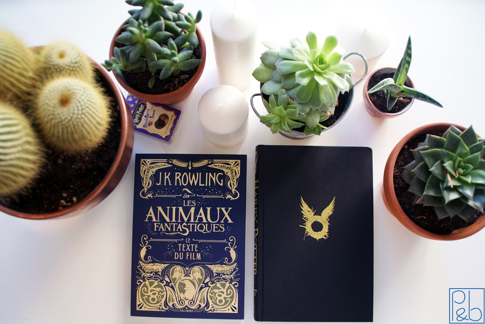 book review - Animaux et Théatre